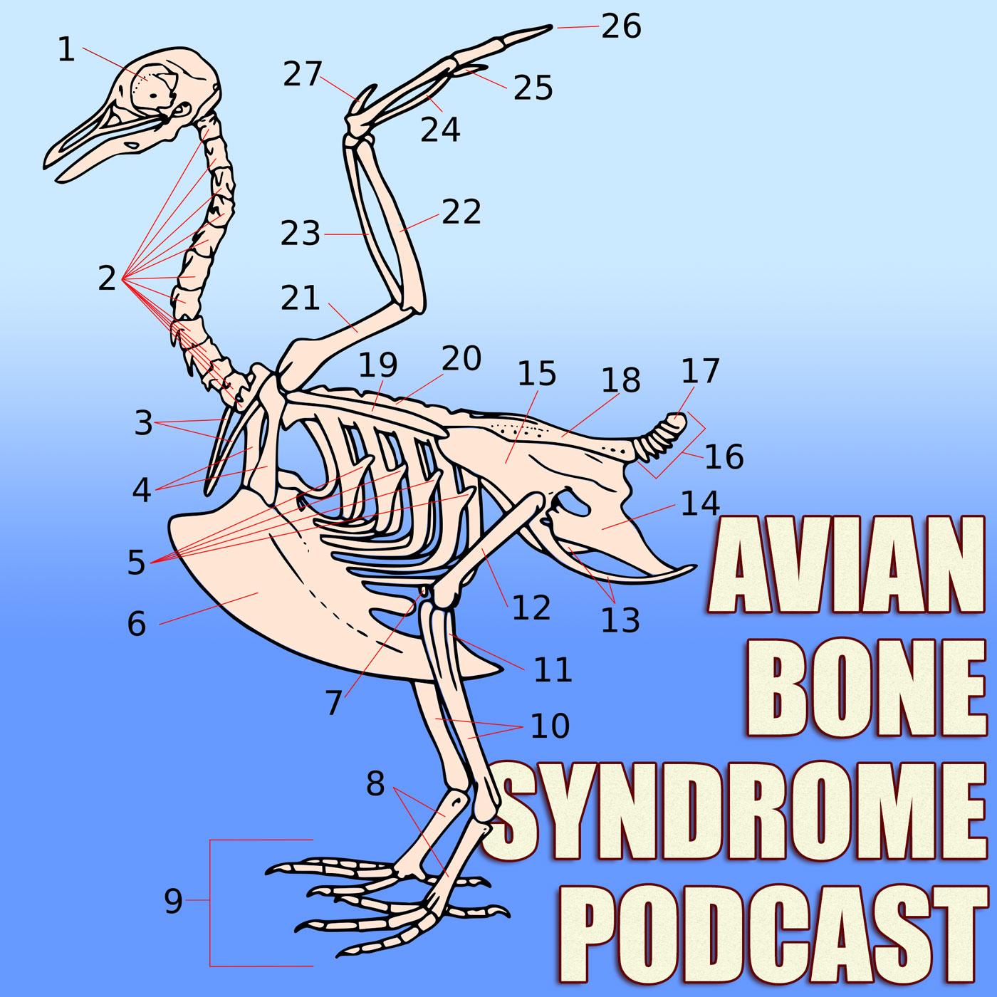 Avian Bone Syndrome Podcast